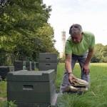 Uwe Alpert leitet mit dem Smoker Rauch in den Bienenstock, um arbeiten zu können. Foto: BSM