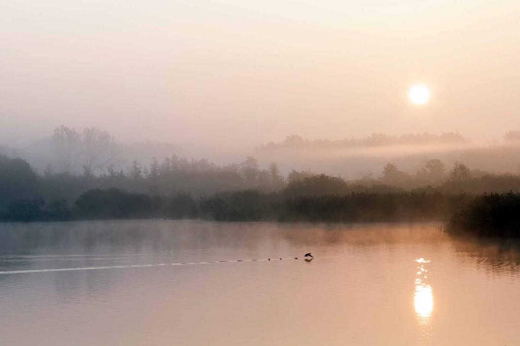 Sonnenaufgang im Morgennebel über dem Schapenbruchteich. Foto: Gerald Grote