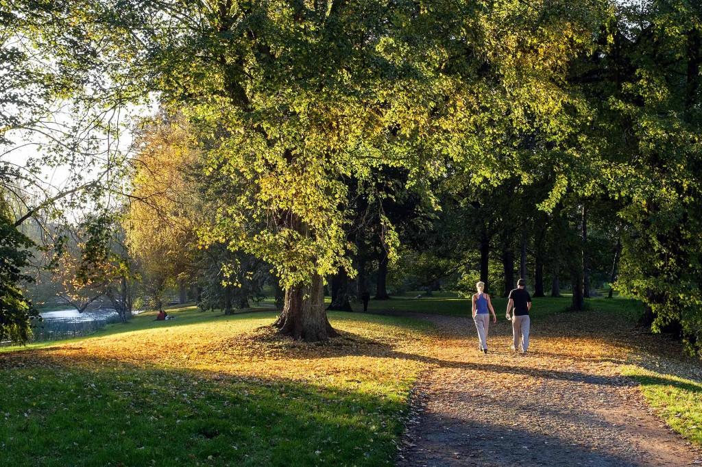 Jogger im Bürgerpark. Foto: Gerald Grote