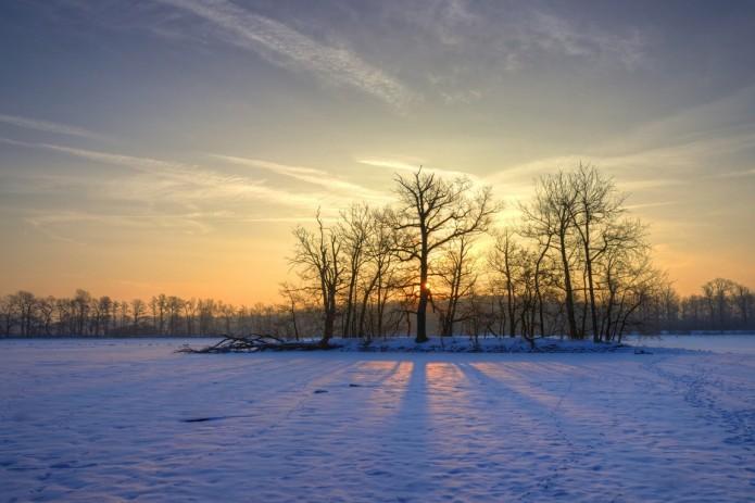 Ein Wintermorgen in Riddagshausen. Foto: Gerald Grote