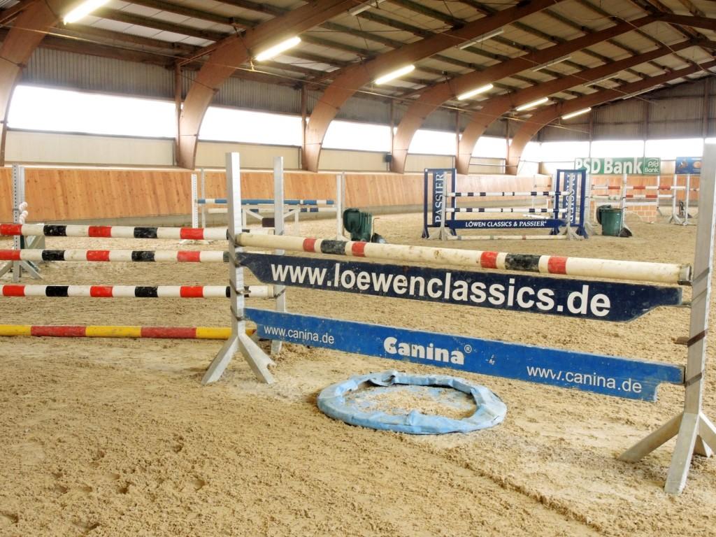 Beim heutigen Training springen die Pferde über niedrigere Hindernisse als im Turnier. Foto: BSM