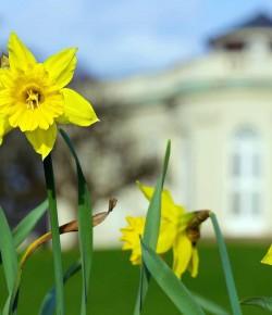 10 Tipps für den Frühling