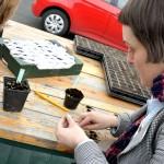 Beim Umsetzen der kleinen Pflänzchen sind Konzentration und Geduld gefragt. Foto: BSM
