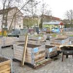 140 Hochbeete wollen im Stadtgarten bepflanzt werden. Foto: BSM