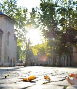 15 Hashtags für den Herbst