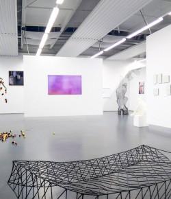 """Eine Ausstellung mit """"Wow-Effekt"""""""