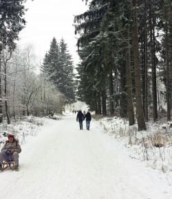 Winterwonderland vor der Haustür
