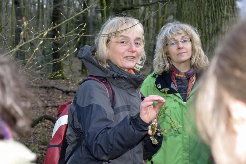 Die Naturpädagogin Gisela Stöckmann führt in die Kräuterküche ein. Foto: BSM