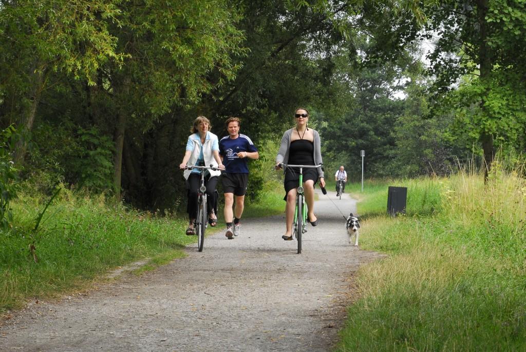 Bei einer Radtour können neue Ecken in der Löwenstadt erkundet werden. Foto: BSM/David Taylor