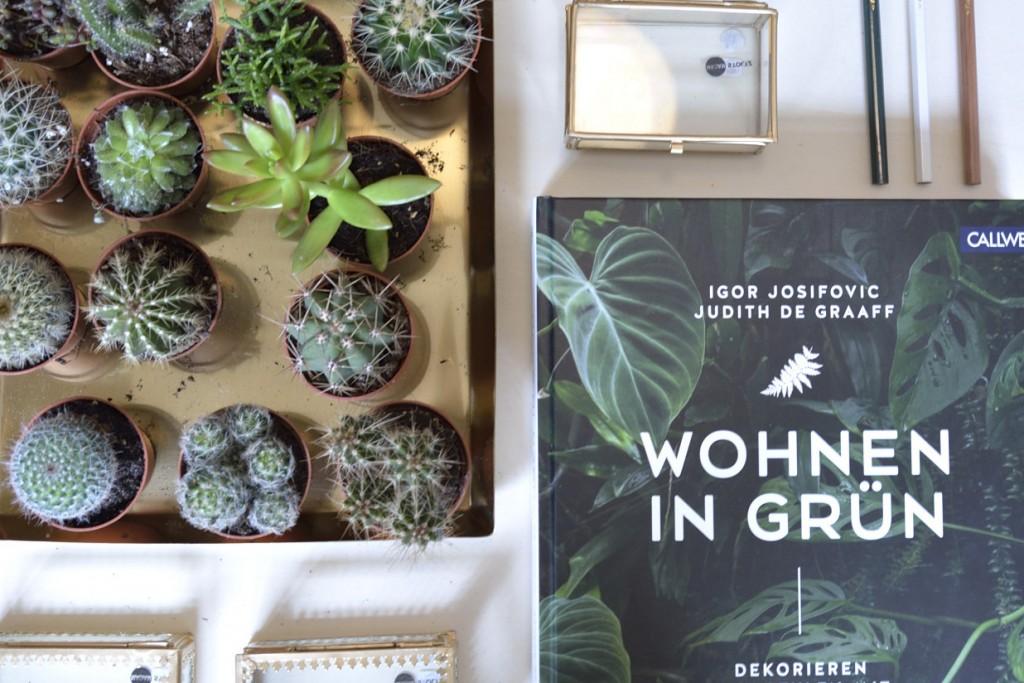 Wohnen in Grün. Neben Beton, Glas und Kupfer setzt Alyssa Schulze vor allem mit grünen Wohnaccessoires Akzente. Foto: BSM