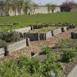 Die Hochbeete sind typisch für einen Klostergarten. Foto: BSM