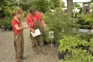Jane Schäfer und Frank Kappelmann prüfen die Qualität eines Nadelbaums. Foto: BSM