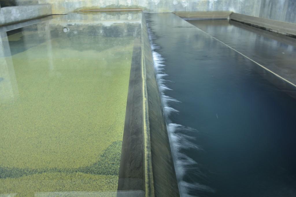 Das Filterbecken im Wasserwerk
