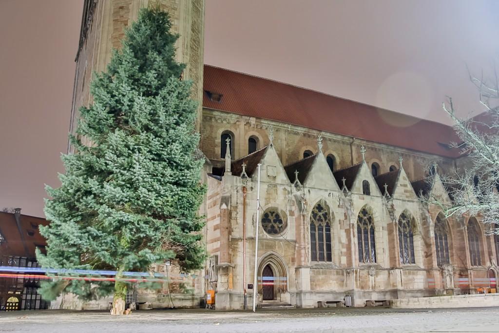 Der Weihnachtsbaum am Domplatz steht, jetzt fehlen nur noch die Lichter. Foto: BSM/Philipp Ziebart