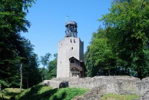 In der Burgruine Lichtenberg steckt viel Geschichte drin. Foto: Stadt Salzgitter