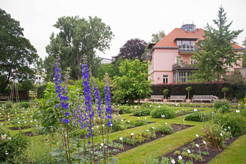 10 Kostenlose Dinge In Braunschweig Leben In Der Lowenstadt