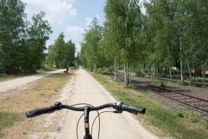 Foto Fahrrad auf dem Ringgleis