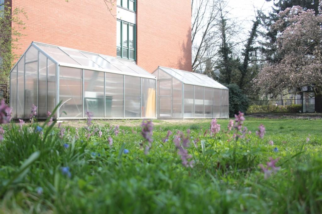 Die Gewächshäuser des Projekts Smart Digital Garden. Foto: Protohaus