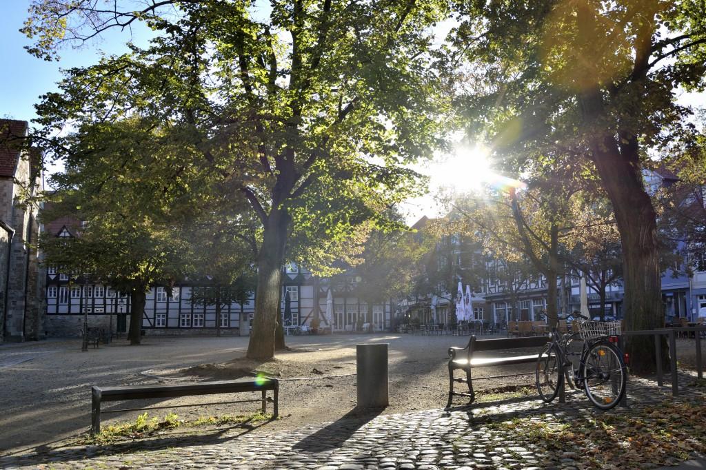 Noch haben viele Laubbäume ihre Blätter - doch nicht mehr lang. Hier ist der Magnikirchplatz zu sehen. Foto: BSM