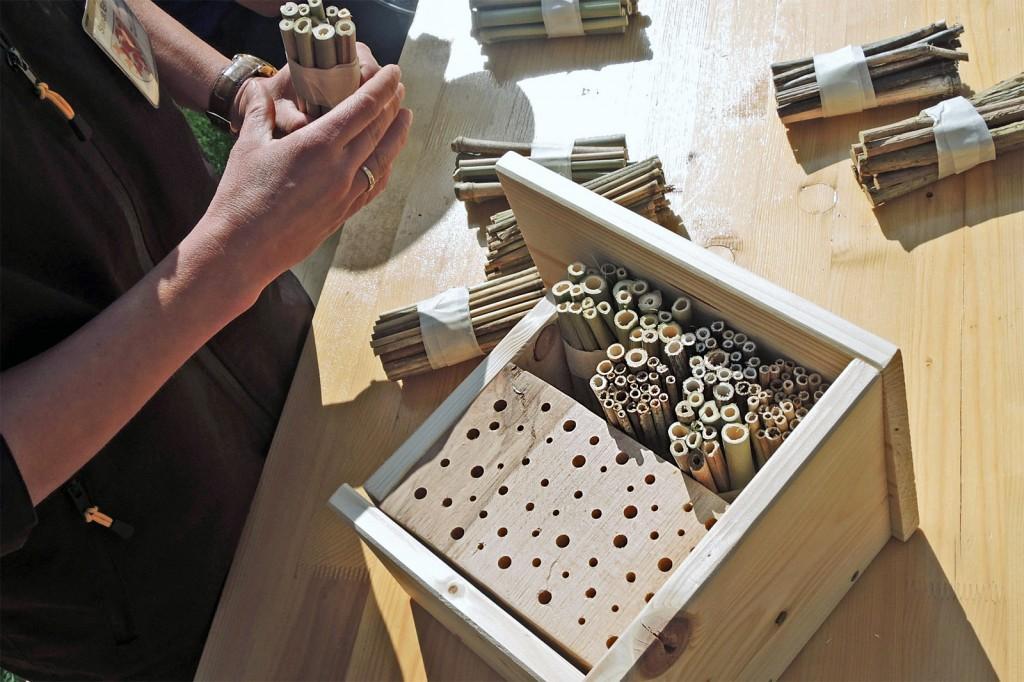 Hier entsteht ein Wildbienenhotel. Foto: BSM