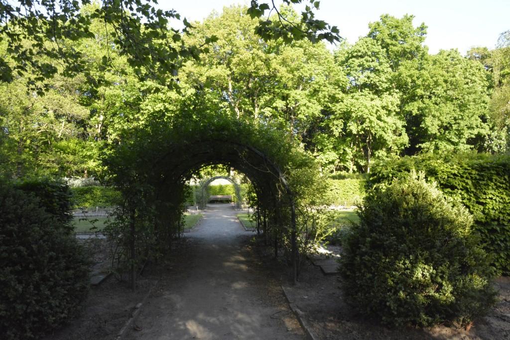 Die grüne Natur rund um den Dowesee.