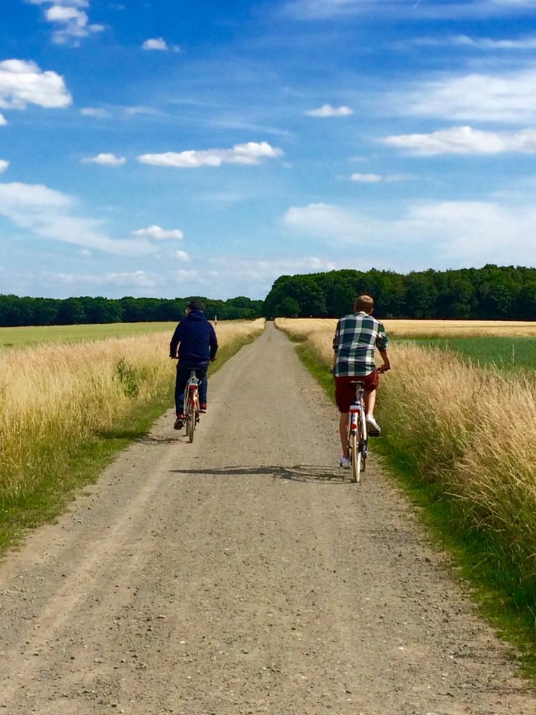 Zurück über Wiesen und Felder. Foto: BSM