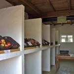 Obst, Gemüse, biologisch, ökologisch
