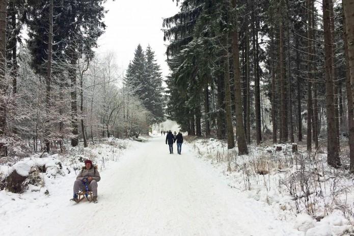 Start des Wanderweges: Noch sind viele Mitstreiter zu sehen. Foto: BSM