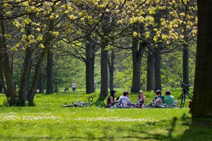Bürgerpark Picknick