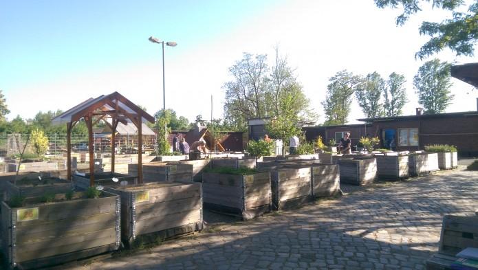 Stadtgarten NEU