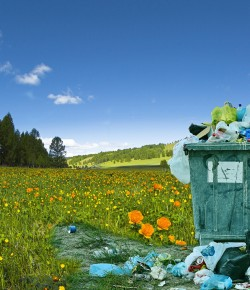Der Umwelt zuliebe