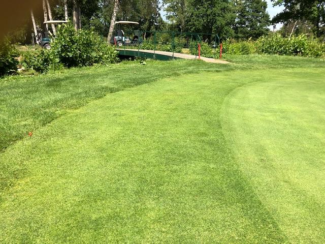 Auf einem Golfplatz gibt es verschiedene Rasenlängen, von ganz kurz bis lang.