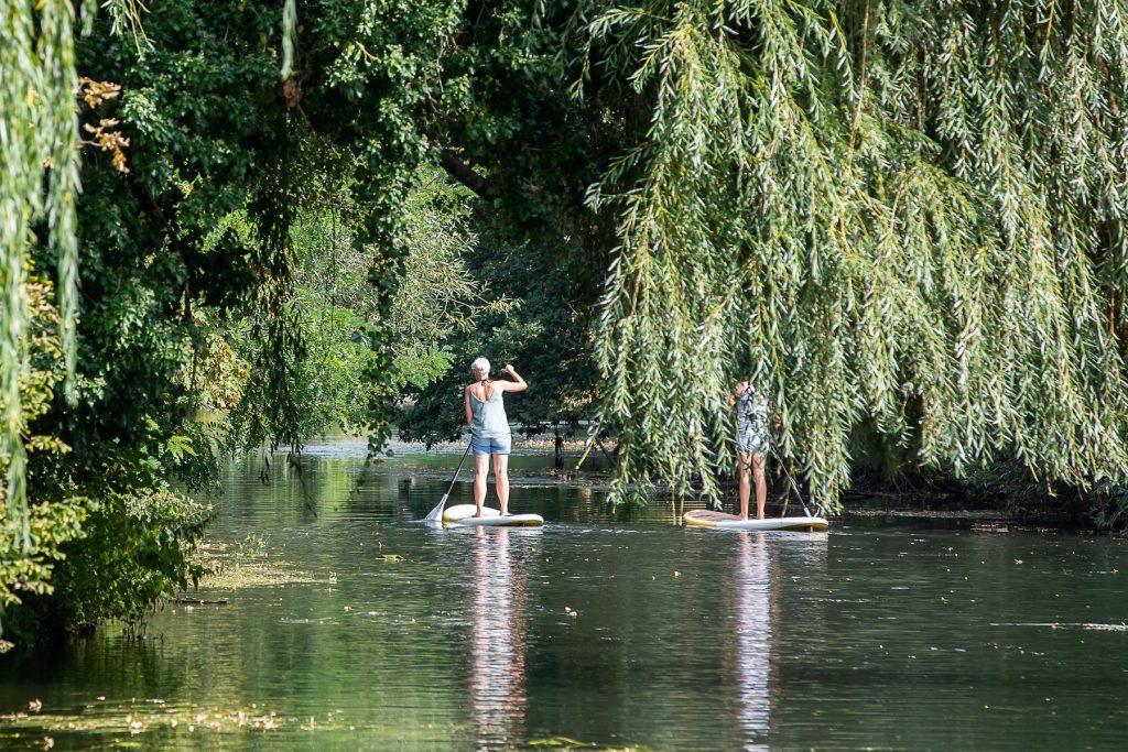 Zwei Stand-Up-Paddler auf der Oker, um sie herum viele grüne Bäume.