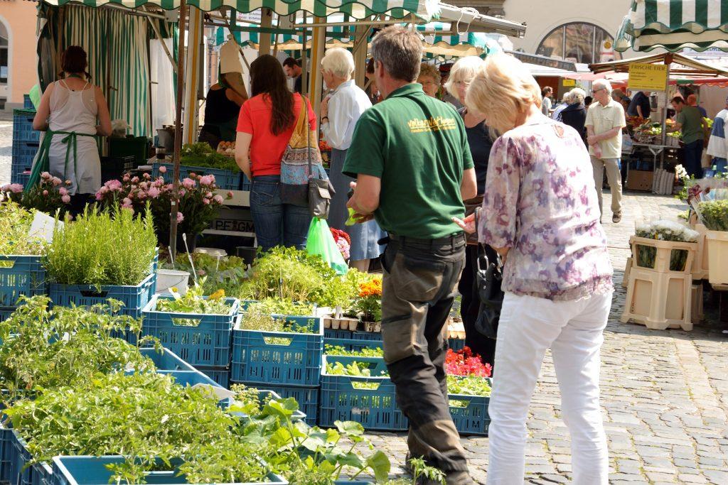 In der linken Bildhälfte sieht man Körbe mit verschiedenen grünen Jungpflanzen. Auch der Anbau von eigenem Gemüse gehört zum Slow Food. In der rechten Bildhälfte zwei Menschen, ein Mitarbeiter des Marktstandes und eine Kundin, die sich über die Pflanzen beugen.