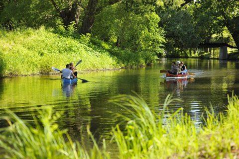 Ein blaues Paddelboot und ein rotes Kanu treffen auf der Oker aufeinander. Grünes Ufer.